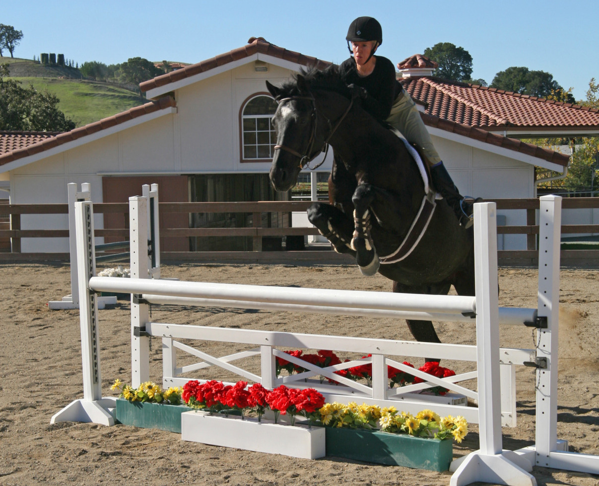 139-Johnston-Road-Equestrian-Jumping-photo-b