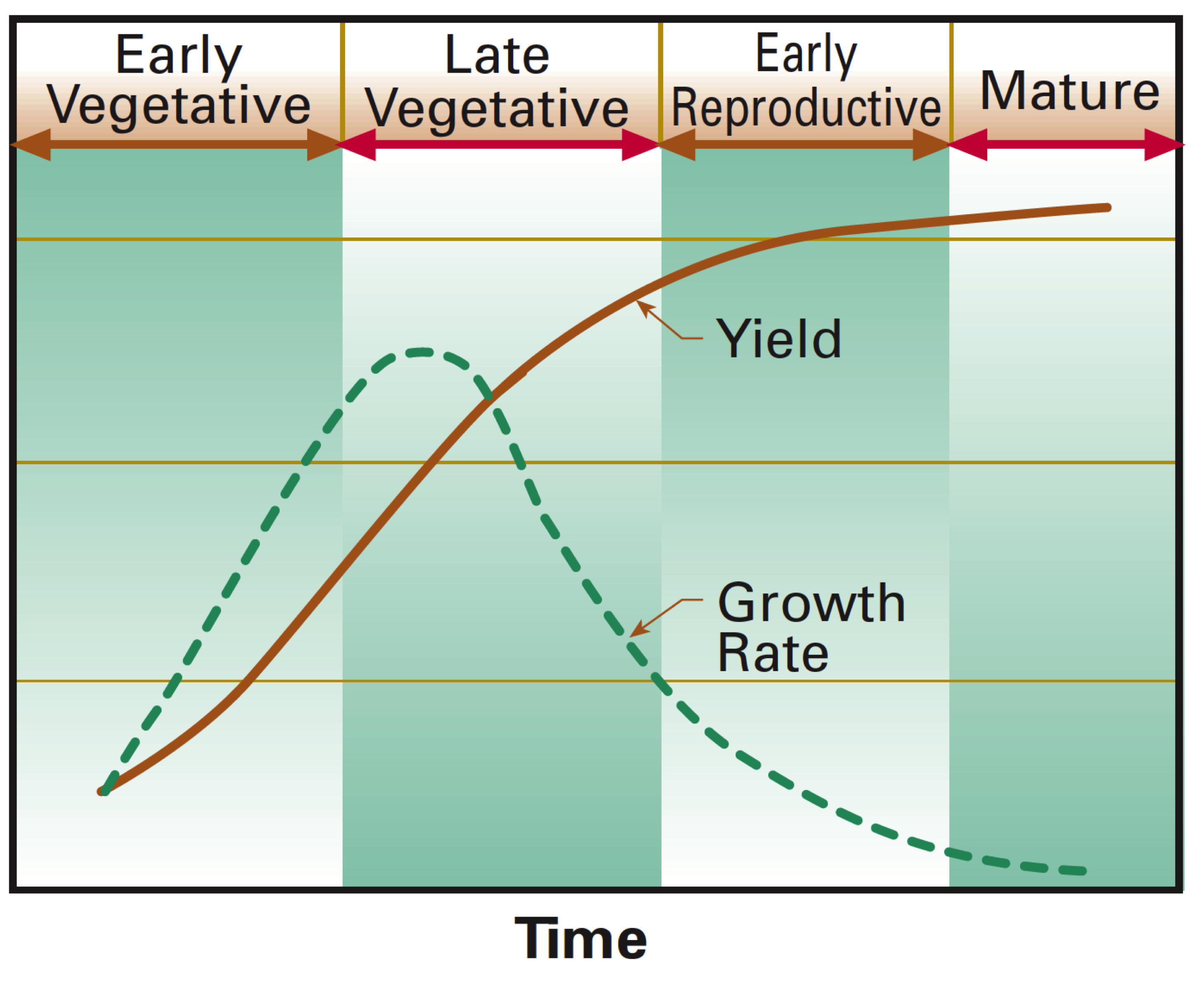 Figure 4. Growth rate changes during growth cycle. USDA Natural Resources Conservation Service