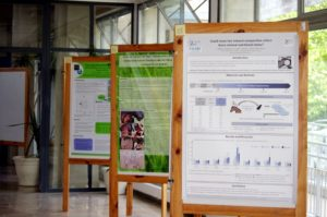 ewen_2016_conferences__3__-_some_scientific_posters